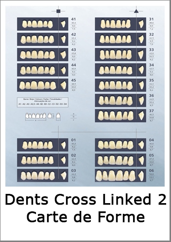 dents-cross-linked