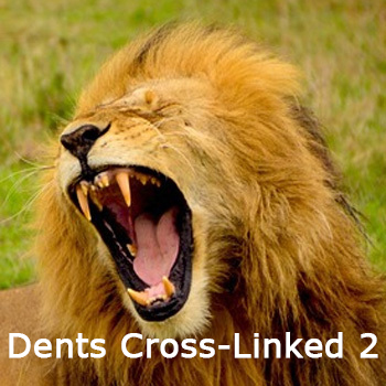 Dents_Cross_Linked